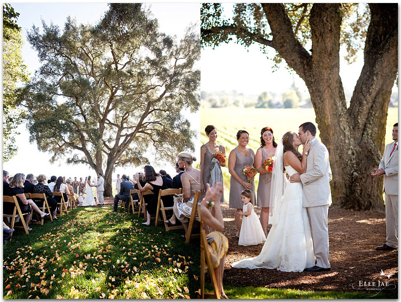 Allison & Andrew, Healdsburg Country Garden Wedding « Elle Jae